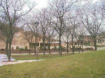 [Wider view of Essex County College campus]