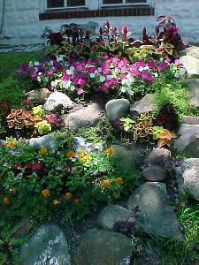 [Florid plantings at a private home in Vailsburg]